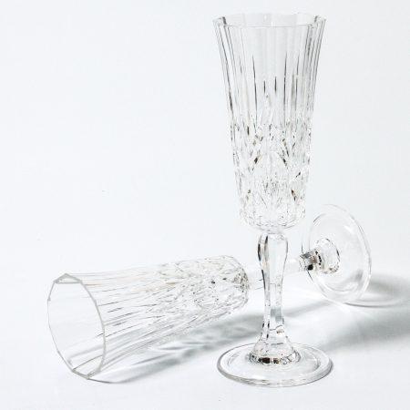 Acrylic Picnic Flute